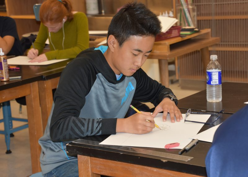 Student sitting at his desk doing work
